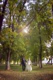 De gelukkige jonggehuwden in de zomer parkeren stock afbeeldingen