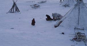 De gelukkige kinderen hebben o-kinderjaren naast de rendieren in een yurtskamp in het midden van het Noordpoolgebied Geschoten op stock footage