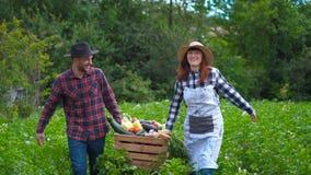 De gelukkige landbouwer houdt verse organische groenten in een houten doos op de achtergrond van een moestuin stock footage