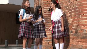 De gelukkige Meisjes van de Tienerschool stock video