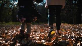 De gelukkige moeder en de dochter lopen langs bosweg Moeder en de dochter die in de herfstbos de lopen werpen op stock videobeelden