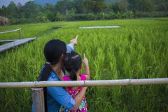 De gelukkige Moeder en haar kind spelen in openlucht het hebben van pret, en het richten bij iets in het Groene padieveld stock afbeeldingen