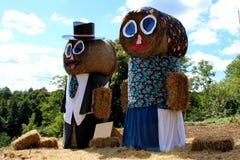 De gelukkige oudere mannen en de vrouw maakten volledig uit hooi Stock Foto
