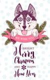 De gelukkige schor hond plakt uit zijn tong Lint en spartakken Royalty-vrije Stock Foto