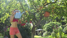 De gelukkige sexy bloemistvrouw in rode borrels en de bustehouder met gieterwater bloeien pot op boom 4K stock footage