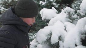 De gelukkige spelen van de kindjongen met sneeuwspar vertakt zich, de winter bos, mooi landschap stock video