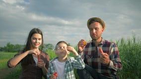 De gelukkige vakantie, glimlachende jonge familie in plaidoverhemden heeft pret met zeepbels bij weide op achtergrond van hemel stock video