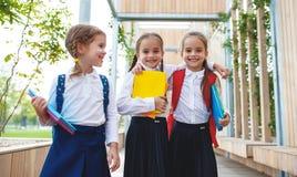 De gelukkige van de het schoolmeisjestudent van het kinderenmeisje basisschool Stock Afbeelding