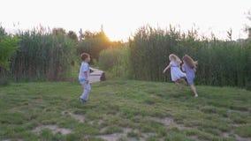 De gelukkige vrienden, de vrolijke actieve kinderenjongen en het meisjesspel lopen en lopen op groen gazon in aard in zonlicht de stock videobeelden