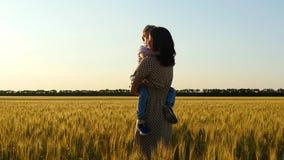De gelukkige zoonslooppas in de wapens van zijn moeder rond een tarwegebied tijdens zonsondergang, de moederomhelzingen en kust h stock video