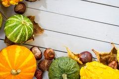 De gemaakte ââof pompoen van de herfst frame Stock Fotografie