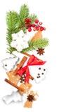De gemberkoekjes van Kerstmis met kruiden Royalty-vrije Stock Foto