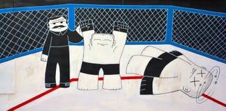 De Gemengde Vechtsporten van de straatkunst Montreal Stock Foto's