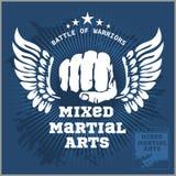 De Gemengde vechtsporten van de strijdclub MMA Royalty-vrije Stock Foto's