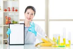 De genetische modificatie die resultaat onderzoeken is o.k. voor menselijke gezondheden Royalty-vrije Stock Foto's