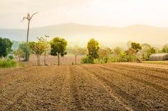 De geploegde bebouwing van de gebiedslandbouwgrond stock foto's