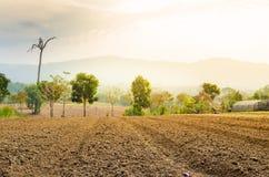 De geploegde bebouwing van de gebiedslandbouwgrond royalty-vrije stock foto's