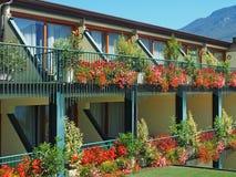 De geranium van balkonsterrassen Stock Fotografie