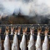 De gerookte Schelvissen van Vissen stock foto's