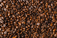 De geroosterde Bonen van de Koffie Stock Foto's