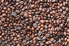 De geroosterde Bonen van de Koffie Stock Foto