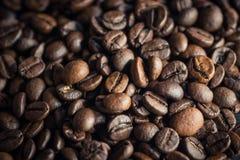 De geroosterde Bonen van de Koffie Selectieve nadruk Royalty-vrije Stock Foto