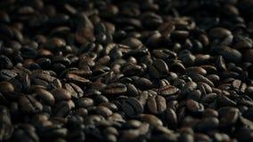 De geroosterde Bonen van de Koffie stock video