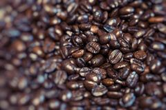 De geroosterde bruine koffiebonen, kunnen als achtergrond worden gebruikt Stock Foto's
