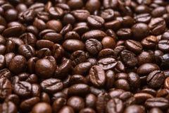 De geroosterde bruine kop van de koffiebeans Stock Afbeeldingen