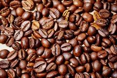De geroosterde koffiebonen, kunnen als achtergrond en textuur worden gebruikt Stock Afbeelding