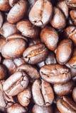 De geroosterde koffiebonen kunnen als achtergrond worden gebruikt Royalty-vrije Stock Foto's