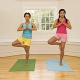 De geschiktheidsvrouwen van de yoga Stock Afbeeldingen