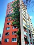 De geschilderde bouw in Berlijn, Duitsland Stock Foto