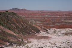 De geschilderde Mening van de Woestijn Stock Afbeelding