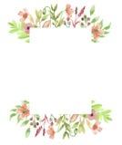 De Geschilderde Slinger van het waterverfkader Poppy Flower Wreath Floral Hand Stock Fotografie