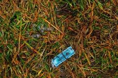 De gesmolten sneeuw en de grasachtergrond zijn valse bokken royalty-vrije stock foto's