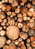 De gestapelde houten logboeken van het besnoeiings ruwe hout royalty-vrije stock afbeelding