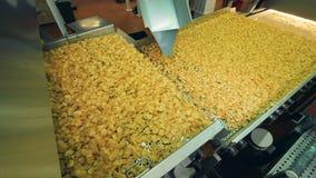 De gestapte transportband verplaatst chips stock footage
