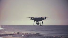 De gestileerde Backlit Hommel vliegt dichtbij Strand stock videobeelden