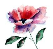 De gestileerde bloem van de Papaver Stock Afbeeldingen