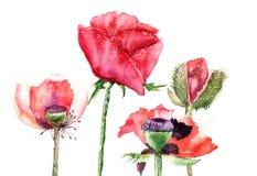 De gestileerde Papaver bloeit illustratie Stock Afbeeldingen