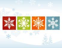 De gestileerde Rug van de Winter van de Sneeuwvlok Stock Afbeeldingen