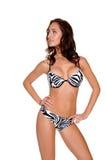 De gestreepte Bikini van de Streep Stock Afbeeldingen