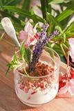 De gestremde melk van aardbeien Stock Afbeelding