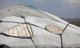 De Gestremde melk van het Melkpoeder van Aaruul royalty-vrije stock foto's