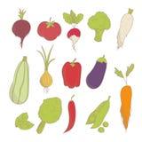 De getrokken reeks van kleurrijke hand schetste groenten: tomaat, ui, broccoli, peper enz. Royalty-vrije Stock Afbeelding