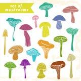 De getrokken reeks van verschillende hand varicolored paddestoelen Stock Afbeeldingen