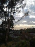 De geulen Los Angeles van de hemelhoop Stock Afbeelding