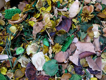 De geur Grasse Stock Afbeeldingen