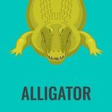 De gevaarlijke groene alligator wacht op lunch royalty-vrije illustratie